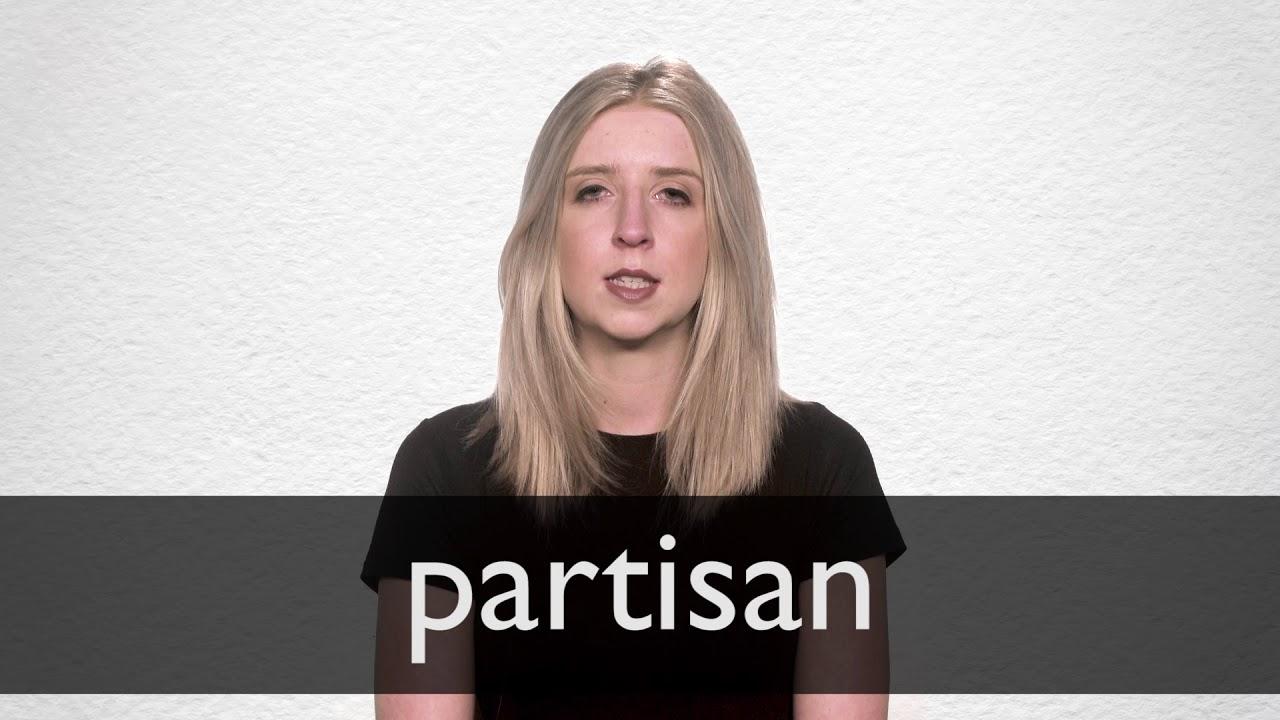 Partisan Synonyms | Collins English Thesaurus