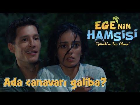 Zeynep ve Deniz'in romantik anları! - Ege'nin Hamsisi - 6.Bölüm