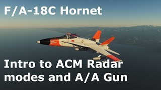 DCS World Tutorials - F/A-18C Hornet - Intro to ACM Radar Modes and the M61 Cannon