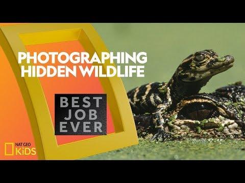 photographing-florida's-secret-wildlife-|-best-job-ever