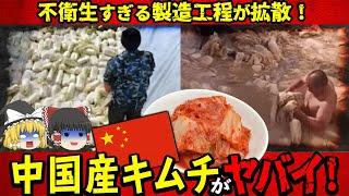 【ゆっくり解説】超危険!中国産キムチの製造工程がヤバすぎると話題に...
