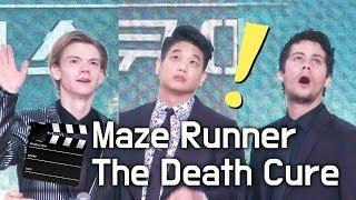 인파에 놀란 '메이즈러너 데스큐어' 레드카펫 (이기홍.딜런 오브라이언.토마스 생스터 Maze Runner: The Cure) @IFC몰 Seoul, Korea