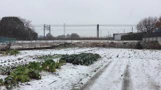 新京成線 雪の日 20180122