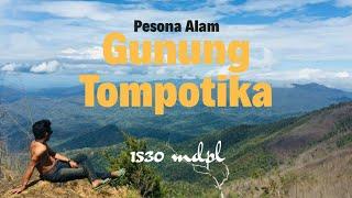 Menyusuri Jalur 'Ena-ena' ke Puncak Gunung Tompotika, Fisik Lemah Gak Usah Ikut