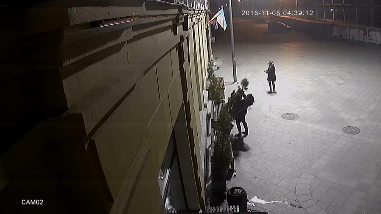У Житомирі на Михайлівській дві дівчини поламали туї. Запис вуличних камер - Житомир інфо