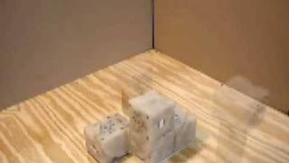 Self-replicating blocks from Cornell University