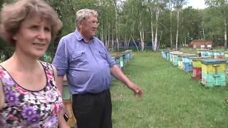 Пчеловод - Ермолаев Анатолий Николаевич. Обзор базы