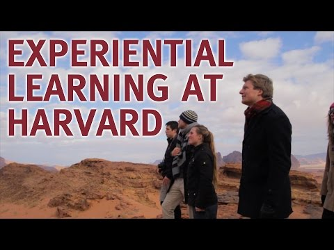 Experiential Learning at Harvard: How Field Study Unlocks Leadership Lessons