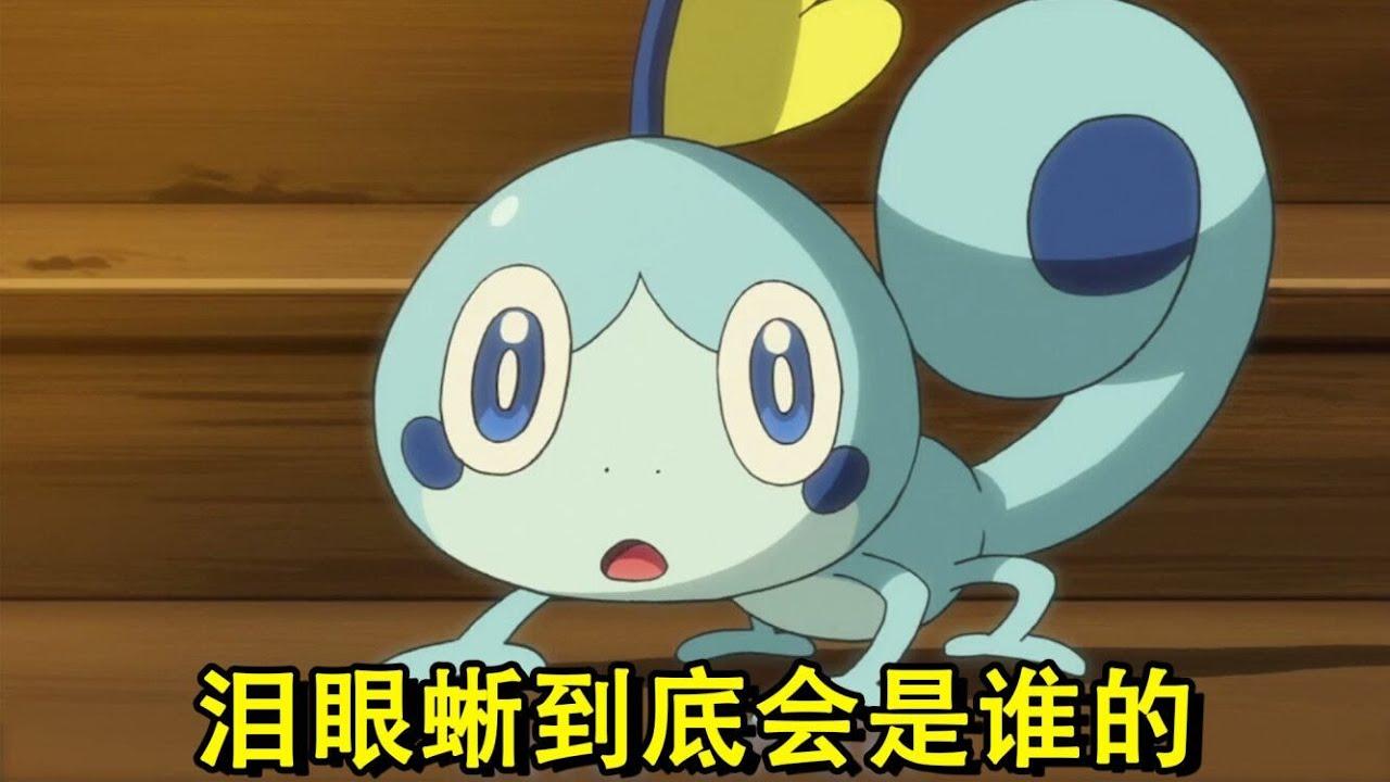 神奇宝贝:泪眼蜥真的会被小豪收服吗?凭这几点,我觉得还是小智收服的可能性高点