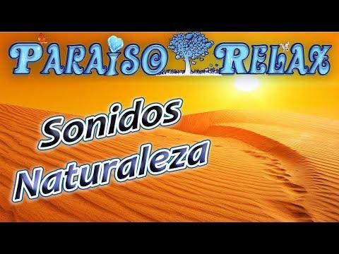 VIENTO EN EL DESIERTO, SONIDOS DE LA NATURALEZA RELAJANTES PARA ESTUDIAR, TRABAJAR, DORMIR, NATURE