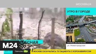 Актуальные новости мира за 22 мая: на Мексику обрушился град - Москва 24