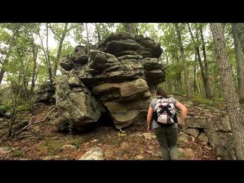 Whispering Pines Trail: Hawn State Park, Missouri