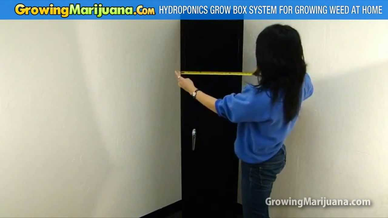 & Hydroponics Grow Box System For Growing Weed At Home - YouTube Aboutintivar.Com