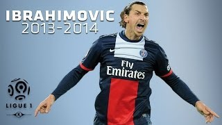 Zlatan Ibrahimovic, ses 15 buts de la 1ère partie de saison / 2013-2014