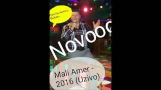 Mali Amer 2016 - Pjesma Asmiru Bajkeru [Uzivo]