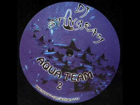 Dj Stingray - It's all connected