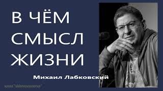 В чём смысл жизни Михаил Лабковский