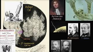 Клеточная теория | Строение клетки | Биология (часть 2)
