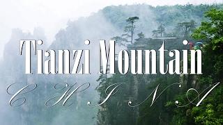 Tianzi Mountains – The Wonderland That Inspired 'Avatar World'
