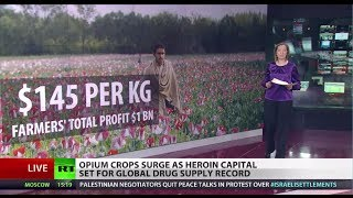 Heroin Capital: Afghan opium sets global drug supply record