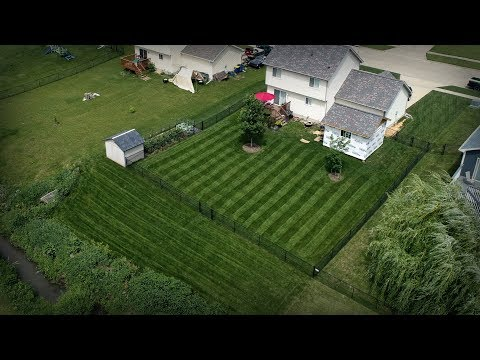 A Lawn Care Sunday - Happy Father's Day