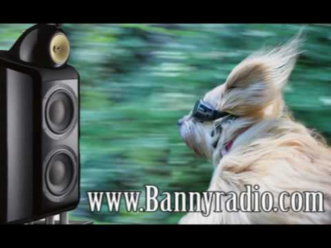 Werbung Bannyradio Wittenberg(Come in find it out! )