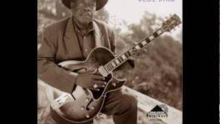 jimmy rogers howlin for my darling.wmv