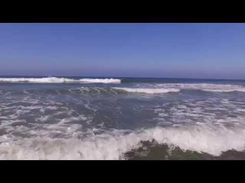 Del Mar, California Dog Beach