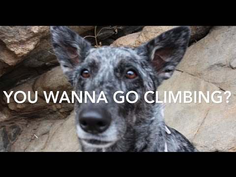 Wright Outside ep10 - climbing Clear Creek Canyon - booger strikes back