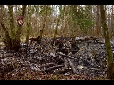 Копаем ГИГАНТСКИЙ артиллерийский немецкий блиндаж (Giant German artillery dugout)/ Searching with MD