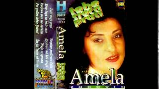 Download Amela Zukovic - Pet godina lazne ljubavi - (Audio 1995)