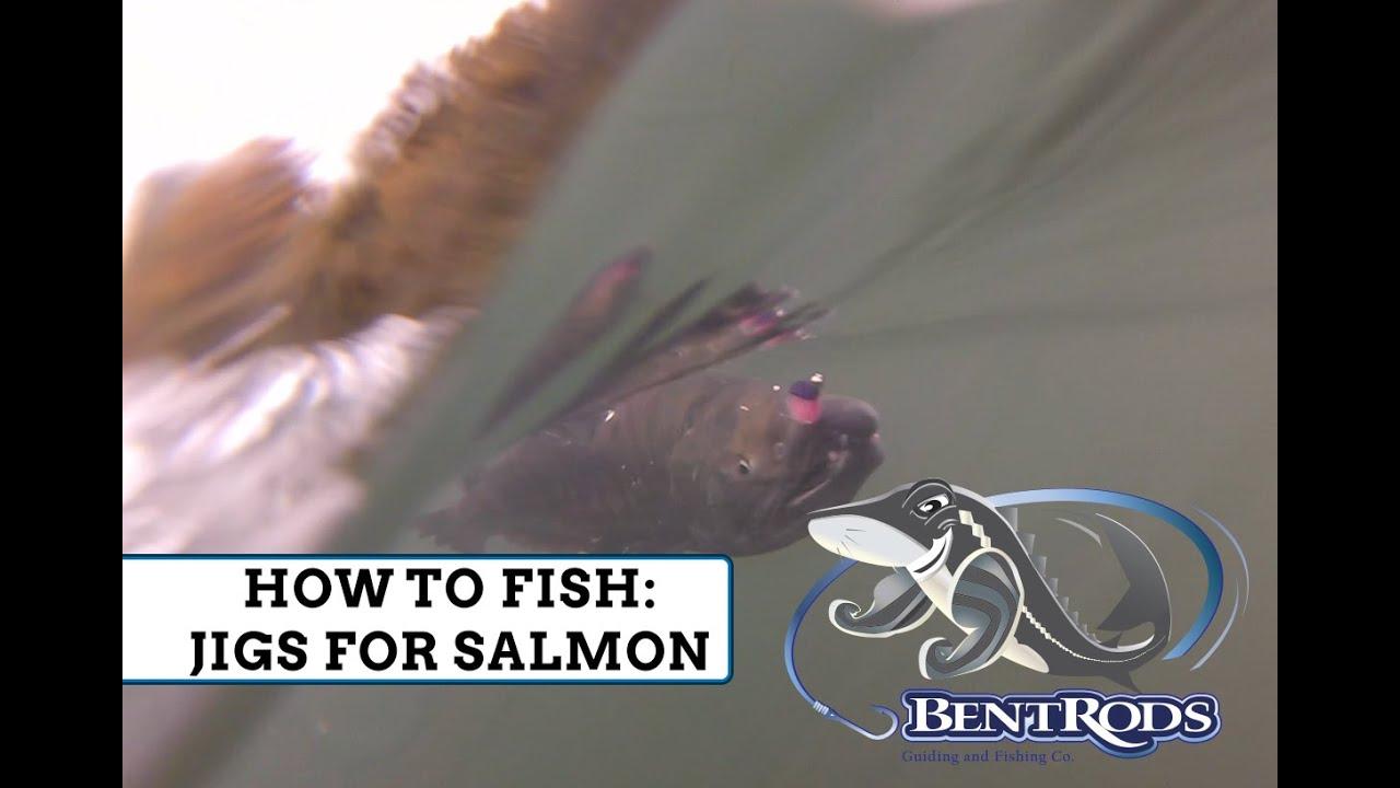 Chum Salmon Fishing — Bent Rods Guiding & Fishing Co