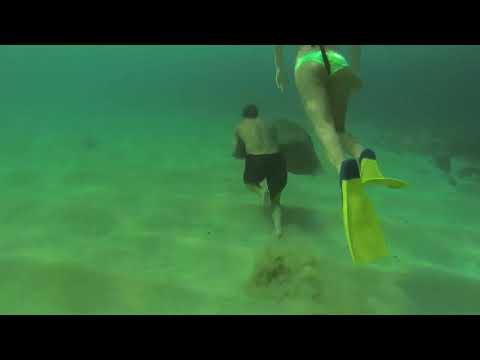 Underwater training Hawaii Oahu n