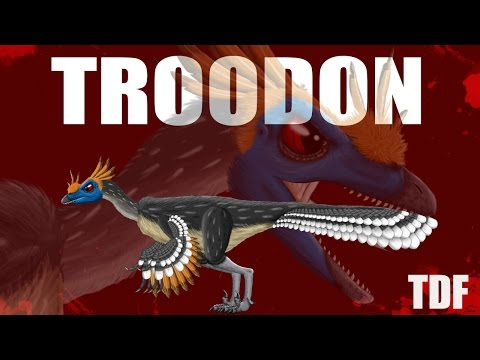 Troodon The Smart Killer (TDF Facts)