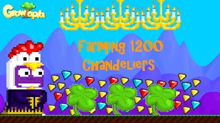 Growtopia - Farming 1200 Chandeliers + Clovers