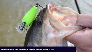 How-to Fish the Adam's Custom Lures ATAK 1.25