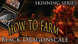How to Farm Black Dragonscales in BWL - Skinning Series