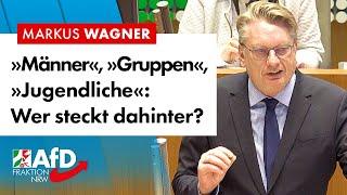 Warum die Täterherkunft endlich genannt werden muss! – Markus Wagner (AfD)