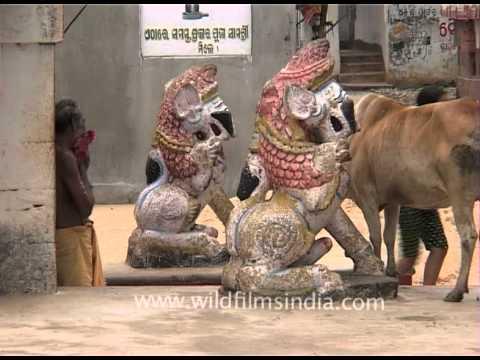 Inside Lingaraj Temple in Bhubaneshwar, Orissa