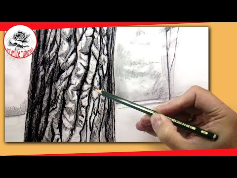 How To Draw a Realistic Tree With Pencil: How to Draw Textures with Pencil Techniques #howtodraw