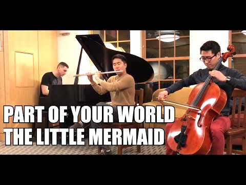 Part Of Your World - The Little Mermaid OST Flute And Cello Cover
