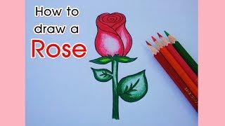 How to draw a rose  easy step by step. : สอนวาดรูปดอกกุหลาบ : วันวาเลนไทน์ : Lovely art