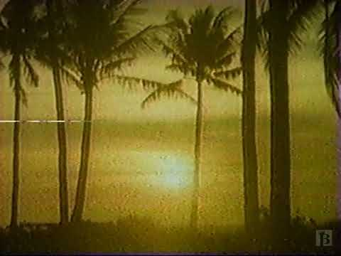 Maritime Marlin Travel Commercial 1989