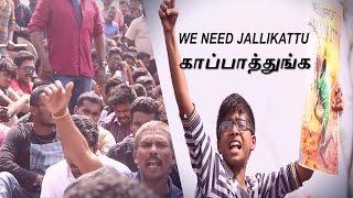 Emotional Youngsters Jallikattu Protest At Marina - என் நண்பர்களுக்கு எதனா ஆச்சு ?-T.R, M.K Stalin
