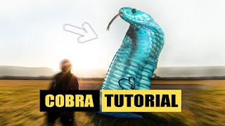 Paragliding cobra take off tips Paragliding Tutorial