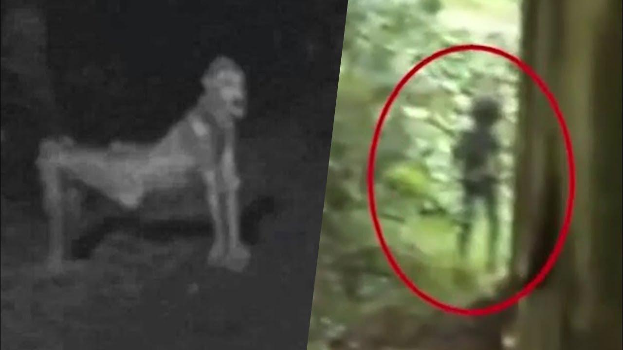 фото видео и приведения призраки