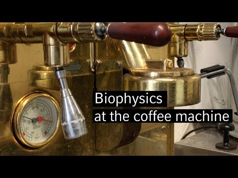 Biophysics at the coffee machine