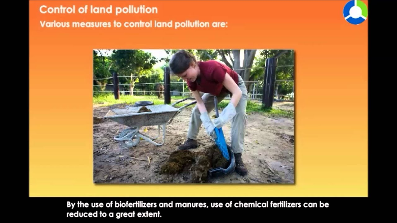 essay about soil pollution Soil pollution can cause health risks the chemicals can produce harmful vapors, or they can contaminate water supplies underneath the polluted soil.