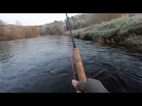Salmon Fishing On The River Tweed At Cardrona 18th November 2019