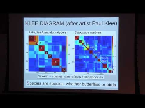 DNA Barcoding: A simple way of identifying species by DNA (Mark Stoeckle, MD)